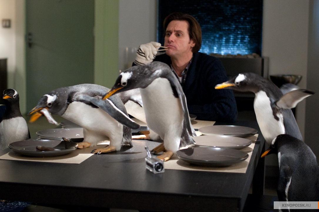 пингвин мистера поппера в хорошем качестве