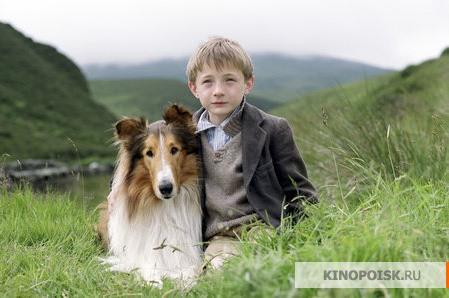 http://st.kinopoisk.ru/im/kadr/3/6/7/kinopoisk.ru-Lassie-367877.jpg