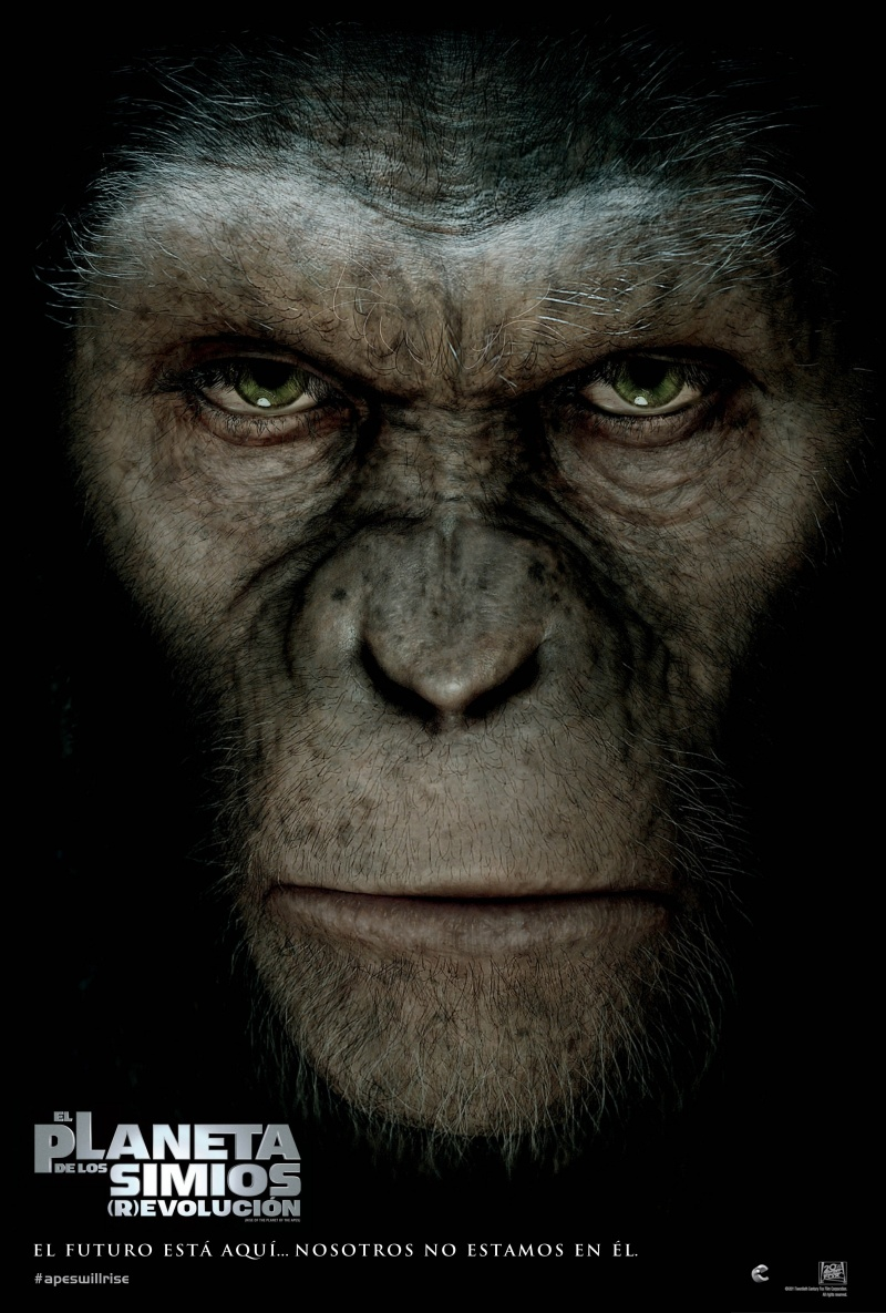 http://st.kinopoisk.ru/im/poster/1/6/4/kinopoisk.ru-Rise-of-the-Planet-of-the-Apes-1648961.jpg