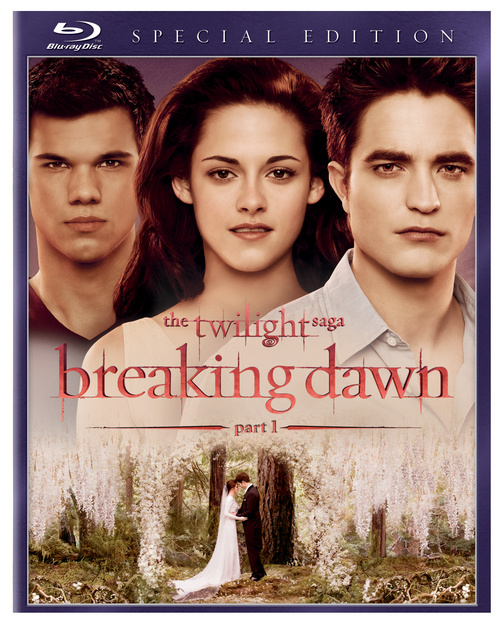 kinopoisk.ru-Twilight-Saga_3A-Breaking-Dawn-Part-1_2C-The-1742734.jpg